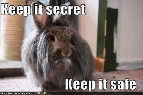 Keep it Secret, Keep it Safe Rabbit