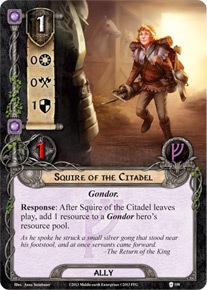 Squire of the Citadel