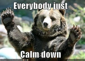 Everybody Just Calm Down Bear (large)