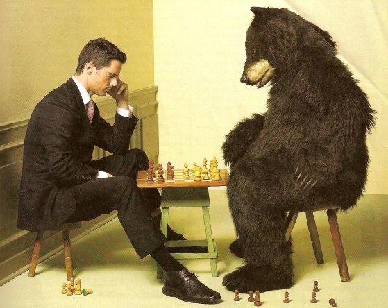 Bear Playing Chess